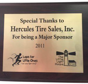 Major Sponsor 2011